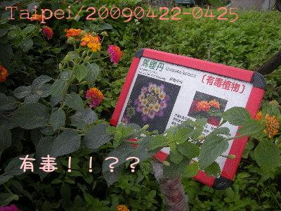 90517-13.jpg
