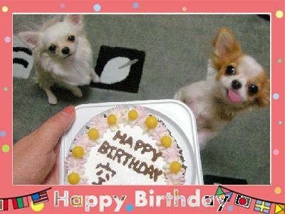 birthday[2].JPG